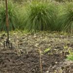 grondbewerking slecht voor de bodem
